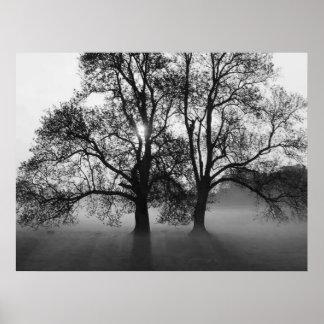 IMPRESSÃO - 2 árvores grandes preto & branco