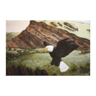 Impressão 2 da águia americana