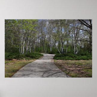 Impressão 4 da movimentação da floresta