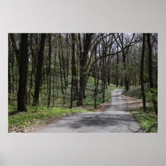 Impressão 7 da movimentação da floresta