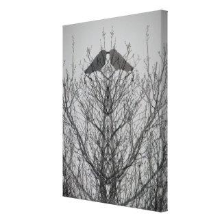 Impressão abstrato do pássaro do corvo da árvore