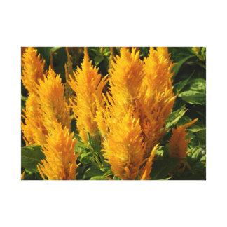 Impressão amarelo do solteiro das flores