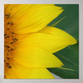 Impressão amarelo grande