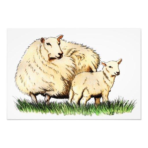 impressão animal da foto de dois carneiros