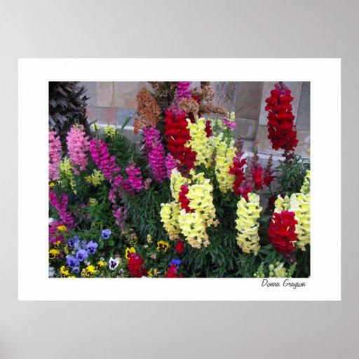 Impressão bonito do poster do jardim