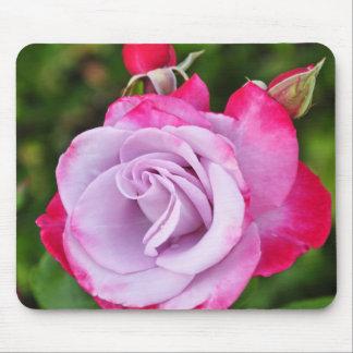 Impressão bonito do rosa do roxo mouse pad