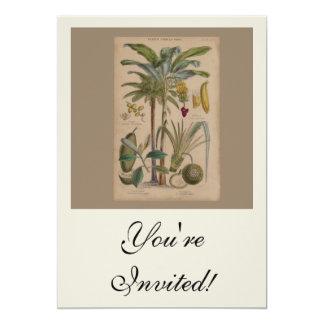 Impressão botânico antigo - fruta tropical convite 12.7 x 17.78cm