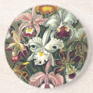 Impressão botânico da orquídea porta copos de arenito