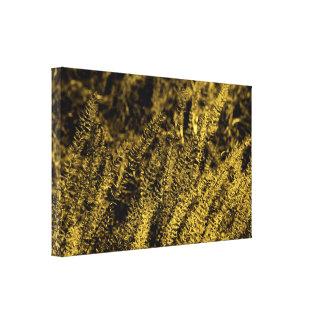Impressão claro dourado das canvas da grama