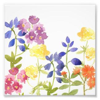 Impressão colorido da foto do Watercolour das