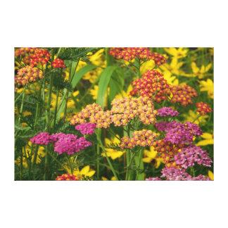Impressão colorido das canvas das flores do jardim