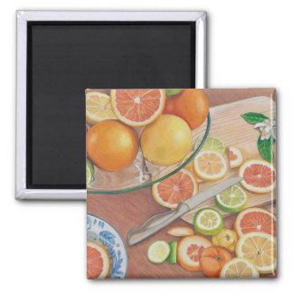impressão colorido do desenho de lápis da fatia ímã quadrado