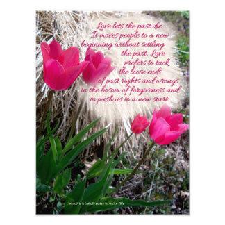 Impressão cor-de-rosa da foto das tulipas com
