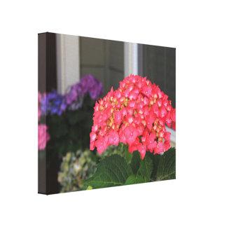 Impressão cor-de-rosa das canvas das flores do
