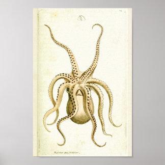 Impressão da arte das criaturas do mar do