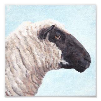 Impressão da foto da cara II das ovelhas negras Impressão De Foto