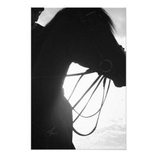 Impressão da foto da silhueta do cavalo