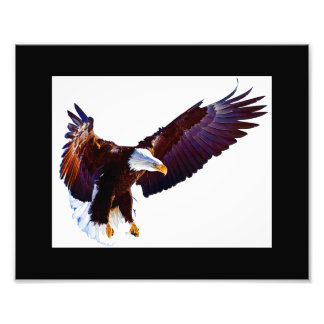 Impressão da foto de Eagle