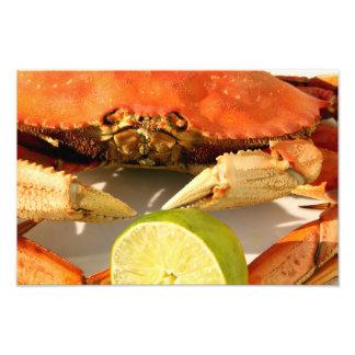Impressão da foto do caranguejo de Dungeness