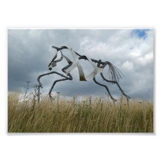 Impressão da foto do cavalo