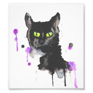 Impressão da foto do gato preto