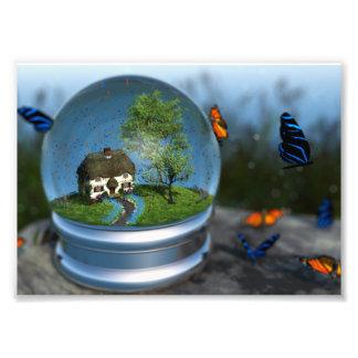 Impressão da foto do globo da borboleta