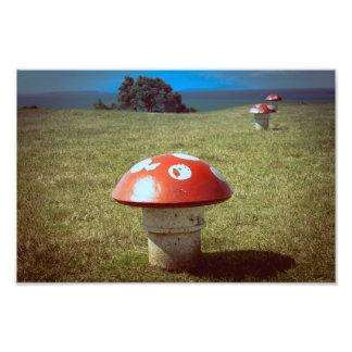 Impressão da foto dos respiradouros do cogumelo