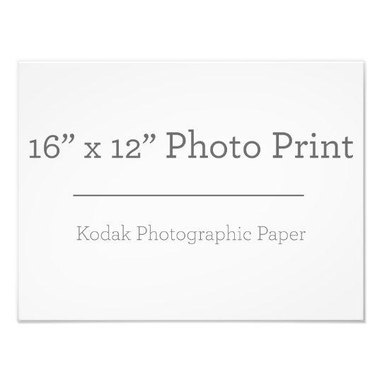 40,64cm x 30,48cm, Papel Profissional de Foto Kodak (Cetim)