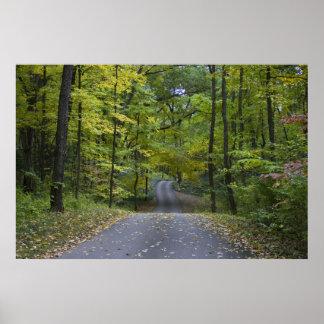 Impressão da movimentação do outono