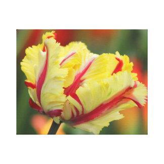 Impressão da parede das canvas da tulipa do