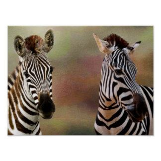Impressão da zebra de Zazzling
