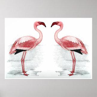 Impressão das belas artes do rebanho do flamingo