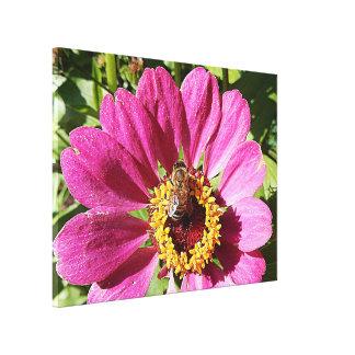 Impressão das canvas - abelha no rosa