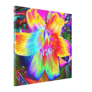 Impressão das canvas - arco-íris Lilly