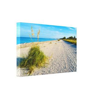 Impressão das canvas da ilha de Captiva