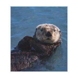Impressão das canvas da lontra de mar na baía da