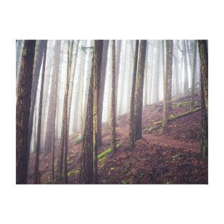 Impressão das canvas da névoa | da floresta