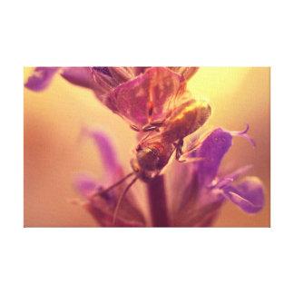 Impressão das canvas de belas artes - inseto