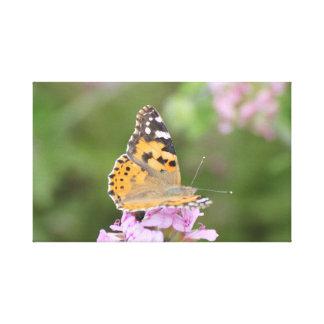 Impressão das canvas de uma foto da borboleta