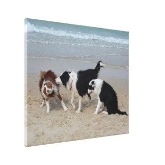 Impressão das canvas - divertimento do cachorrinho