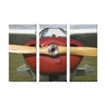 Impressão das canvas do avião impressão de canvas esticadas