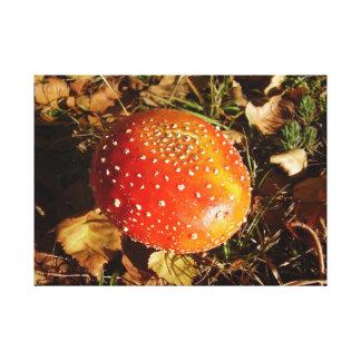 Impressão das canvas do cogumelo do Agaric de