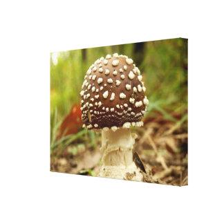 Impressão das canvas do cogumelo do boné da