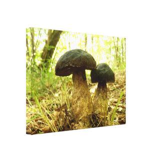 Impressão das canvas do cogumelo do pruinatus de