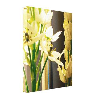 Impressão das canvas do estiramento das flores
