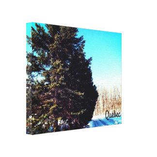 Impressão das canvas do inverno de Canadá