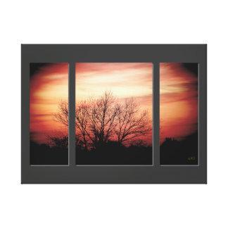 Impressão das canvas do Triptych do vidoeiro do po Impressão Em Tela