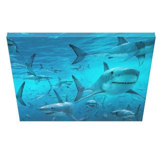 impressão das canvas do tubarão
