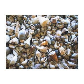 """Impressão das canvas dos """"Seashells"""""""