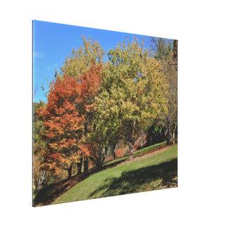 Impressão das canvas - jardim do outono